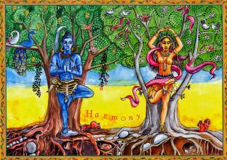 """Shakticard """"Harmony"""""""