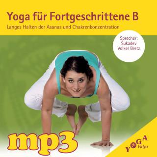 mp3 Download Yoga für Fortgeschrittene B