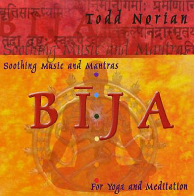 CD von Todd Norian: Bija