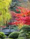 Blankbook Japanischer Garten