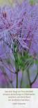 "Lesezeichen ""floral in lila"""