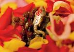 """Postkarte """"Ganesha Puja"""""""