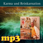 mp3 Karma und Reinkarnation