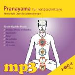 mp3 Download Pranayama für Fortgeschrittene